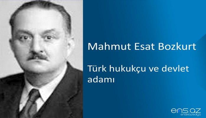 Mahmut Esat Bozkurt