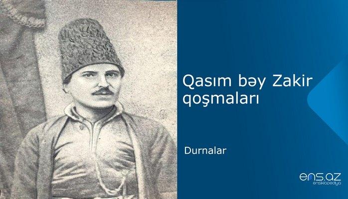 Qasım bəy Zakir - Durnalar