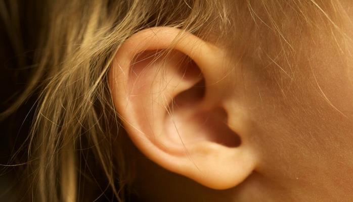 Ученые объяснили природу чувствительности человеческого уха