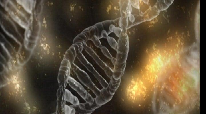 Алгоритм поможет биологам разобраться в регуляции генов