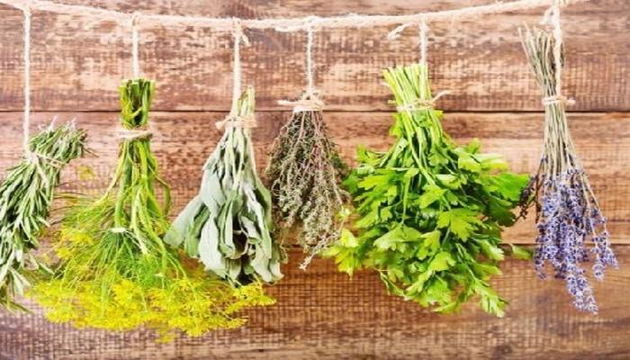 Четыре проверенных натуральных средства от хронического воспаления