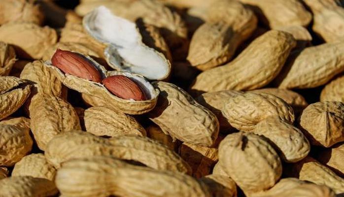 Диетологи рассказали о смертельной опасности некоторых видов орехов