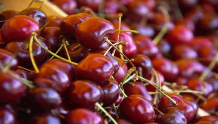 Ученые обнаружили неожиданное полезное свойство вишни