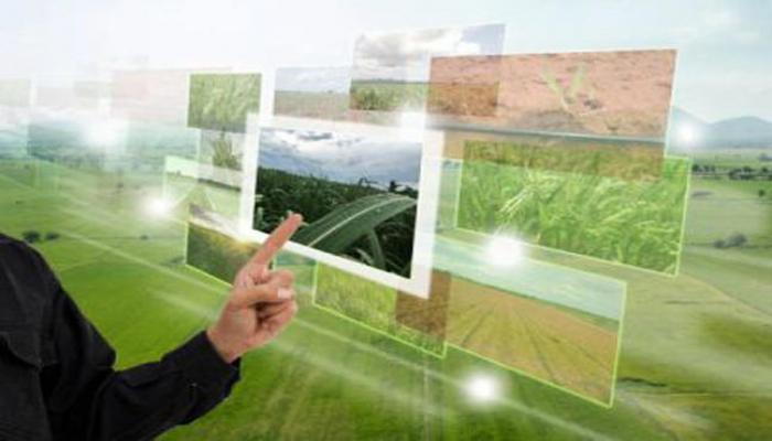 Азербайджанские фермеры получат субсидии через Электронную сельскохозяйственную систему