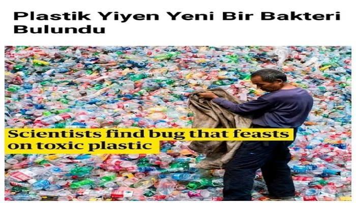 Plastik Yiyen Yeni Bir Bakteri Bulundu