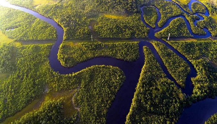 Amazonda meşələrin qırılması qlobal istiləşməyə gətirir