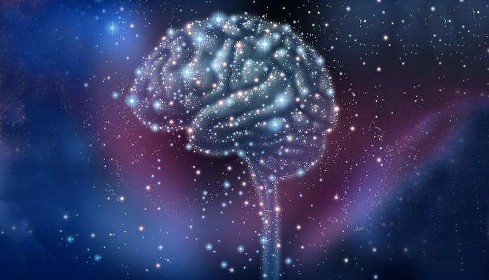 Ученые обнаружили новое свойство человеческого мозга