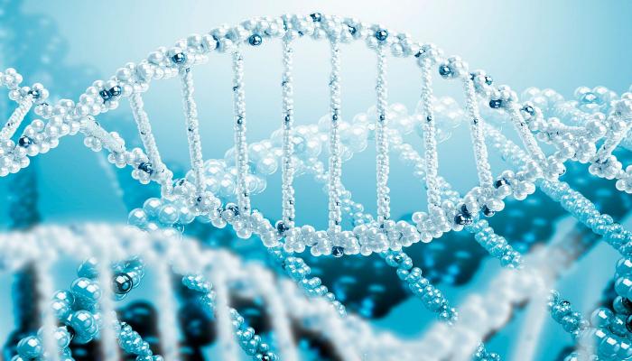 Ученые впервые омолодили людей на уровне ДНК