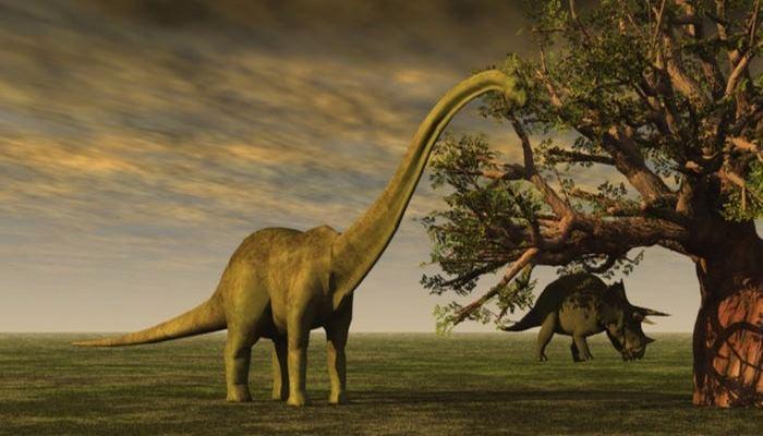 Bilim İnsanları: Birkaç Yıl İçerisinde Canlı Dinozorlar Göreceğiz