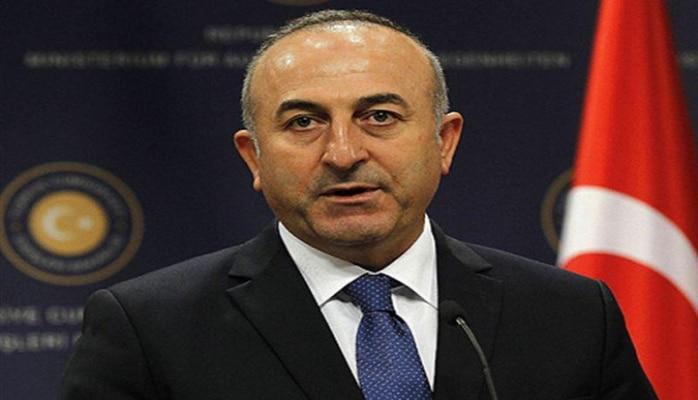 МИД Турции: Анкара поддерживает политическое решение сирийского кризиса