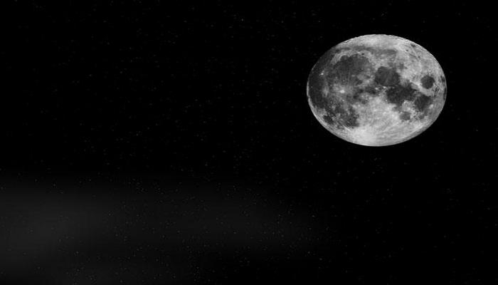 Ученые NASA накормили тараканов лунной пылью во время проверки ее безопасности для экосистемы Земли