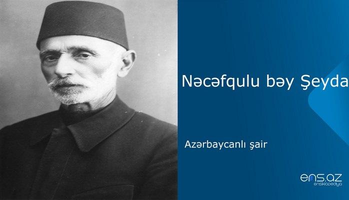 Nəcəfqulu bəy Şeyda