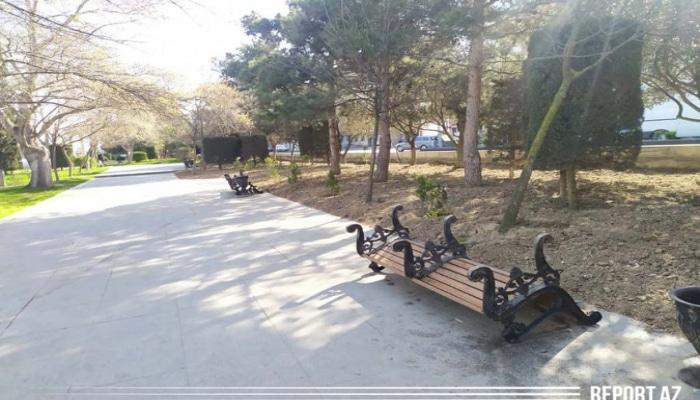 В связи с коронавирусом в парках убрали скамейки