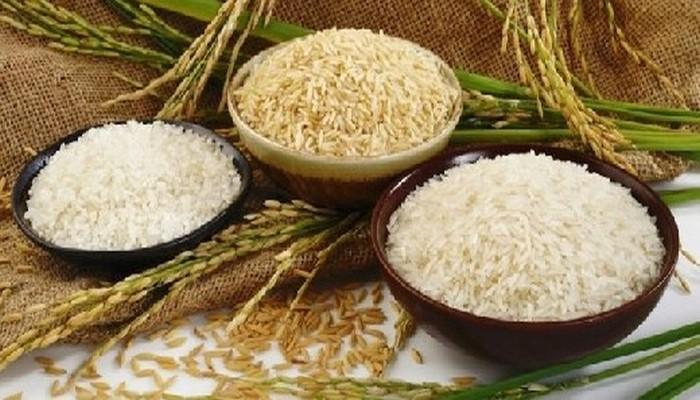 Ученые выявили уникальное свойство риса