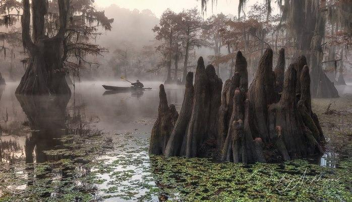 Guardians of swamps